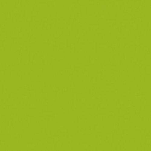 Efco MS Multi-Surface Acrylic Satin green curry