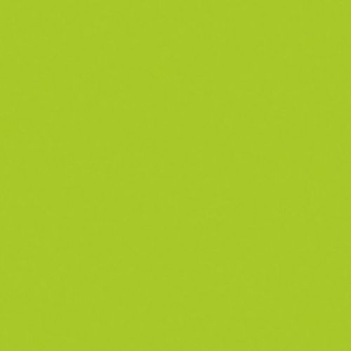 Efco MS Multi-Surface Acrylic Satin green olive